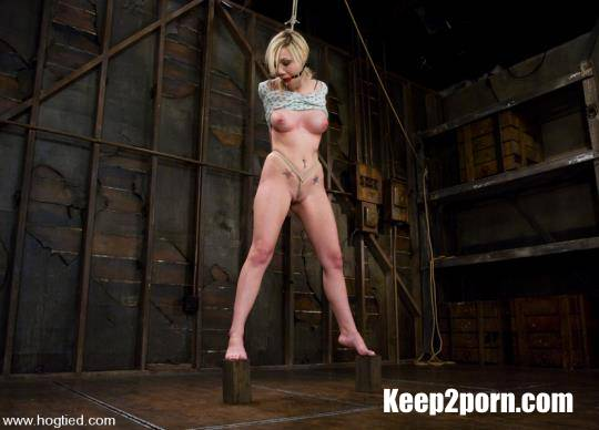 Samantha Sin, Matt Williams - Blond, shaved, toned, and a former gymnast - now a first time bondage model [Hogtied, Kink / HD 720p]